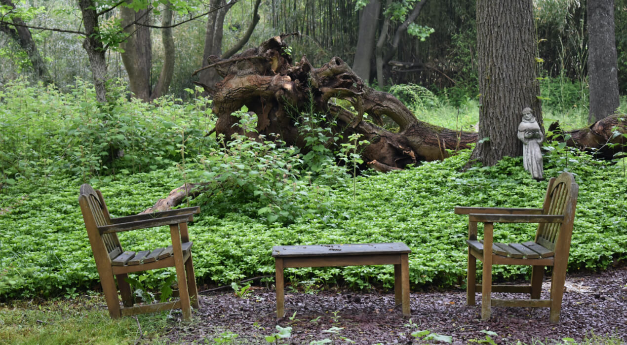 Two chairs and a small table set up in the forest